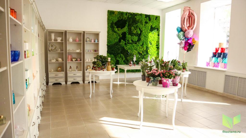 Стабилизированный мох в салоне цветов amore+fiori